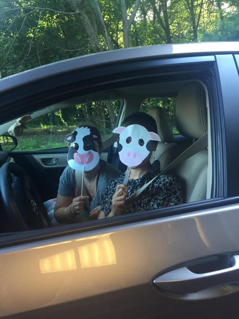 Branding Cow head Chick fil A